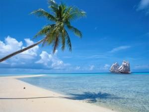 J'ai testé pour vous : Passer des Antilles à la Picardie